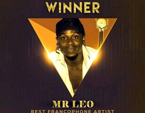Mr.Leo wins best francophone artist at the African Entertainment Awards USA.